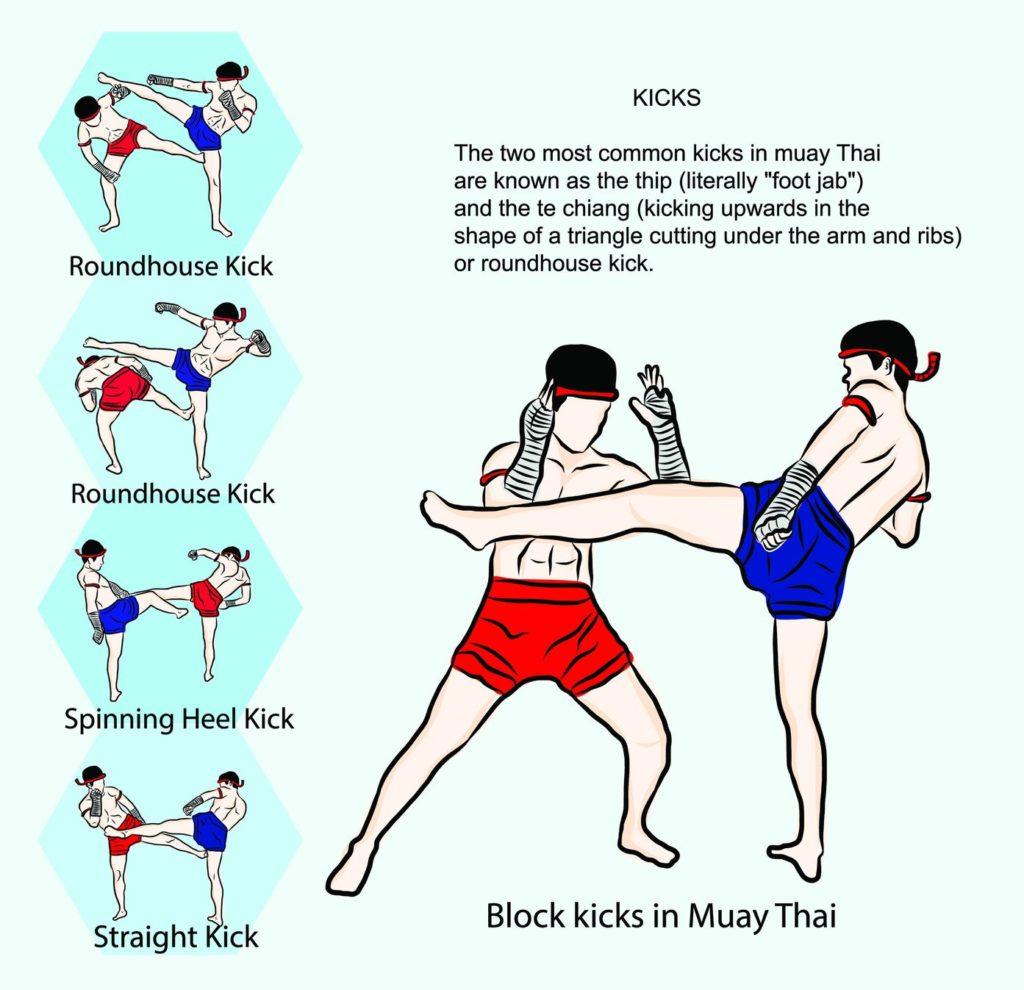 Muay Thai Techniques Kicks