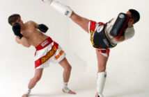Kampfsportarten werden immer beliebter